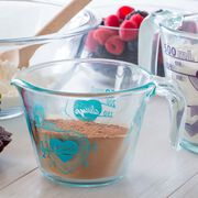 Love 2Cup Turquoise Measuring Cup